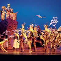 the-lion-king-musical-hamburg.jpg